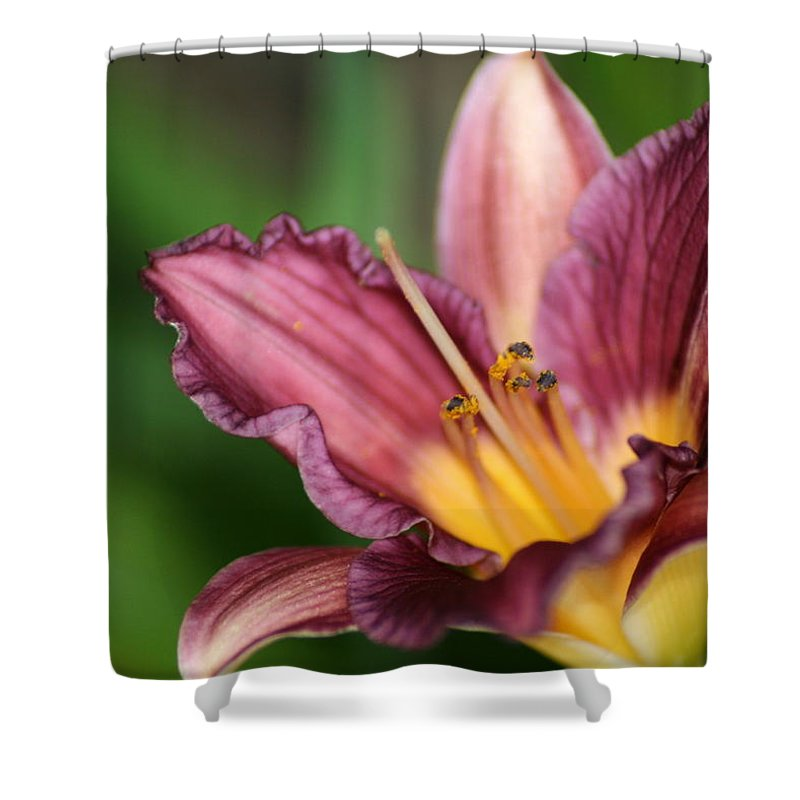 Floral Shower Curtain featuring the photograph Royalty by Marla McFall