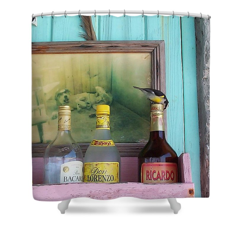 Charity Shower Curtain featuring the photograph Rum Shack Bananaquit by Mary-Lee Sanders