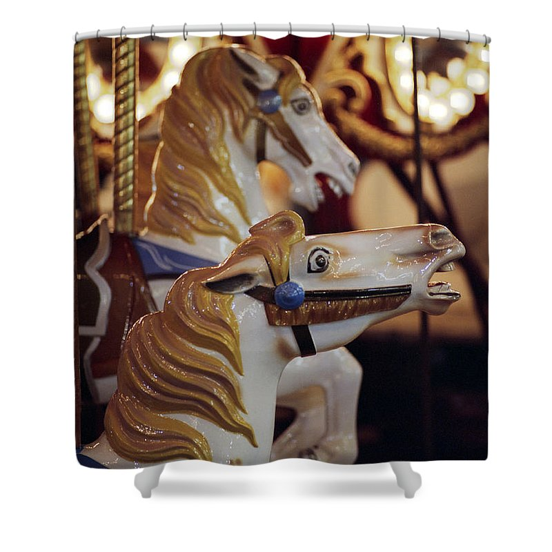 Horses Shower Curtain featuring the photograph Runaway Horses by Ayesha Lakes