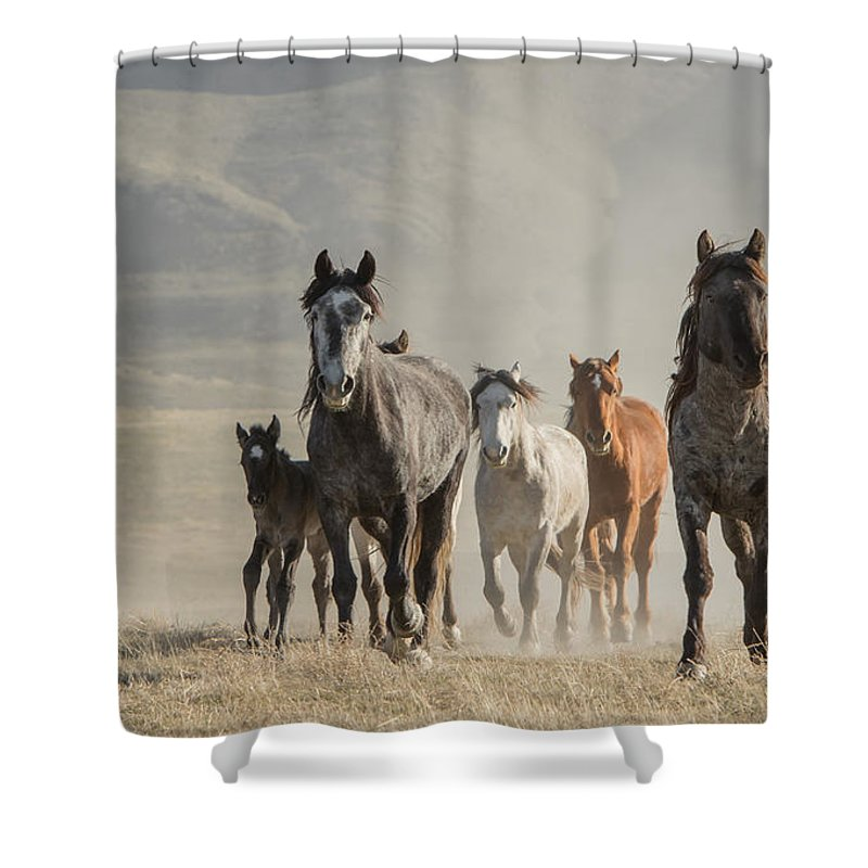 Horse Shower Curtain featuring the photograph Running To Water by Kent Keller