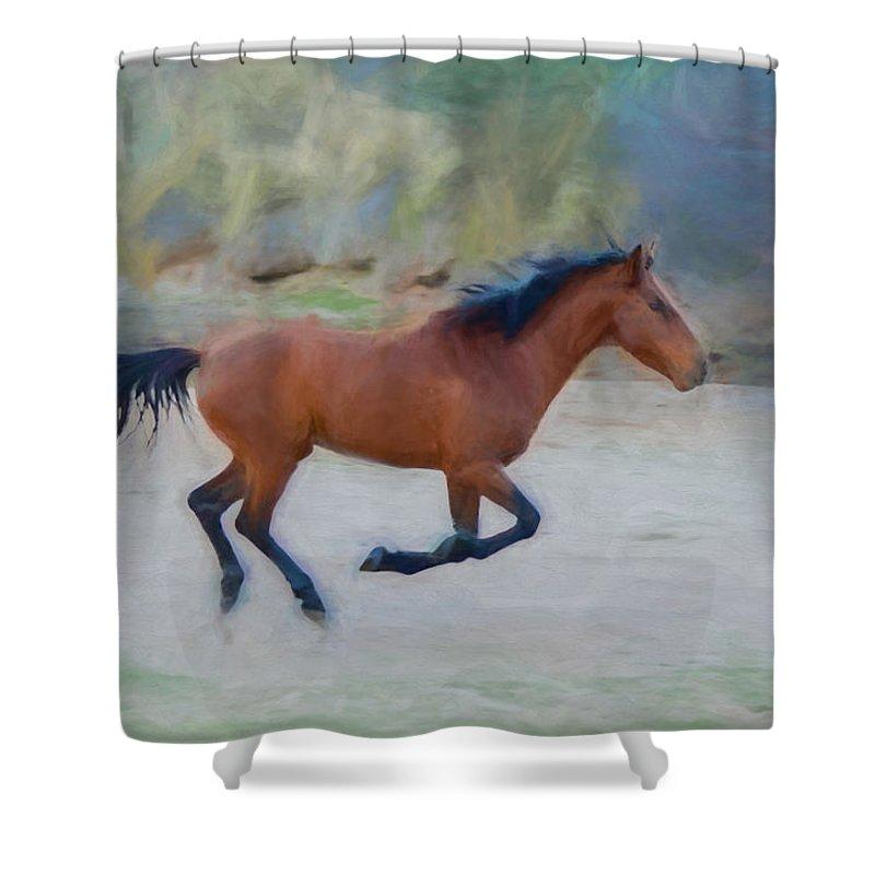 Wild Shower Curtain featuring the photograph Running Wild Stallion by Susan Westervelt