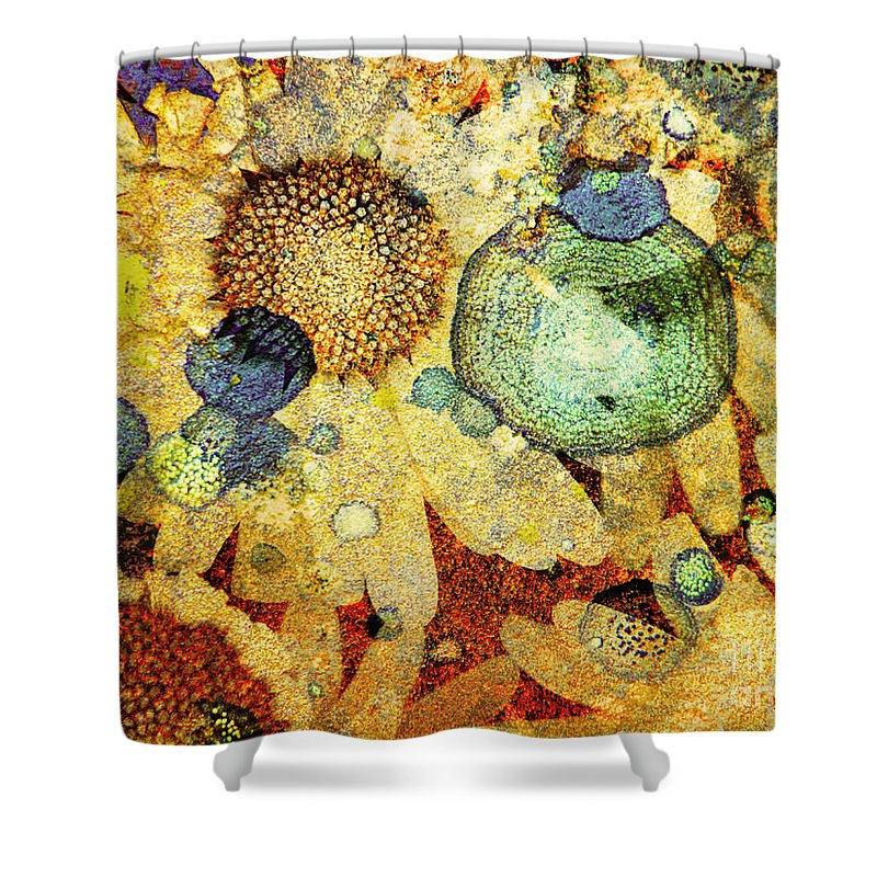 Texture Shower Curtain featuring the photograph Rust And Flowers by Tara Turner