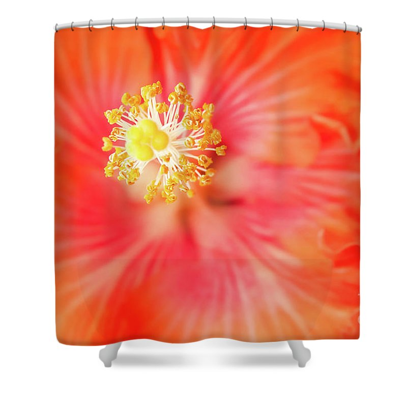 Hibiscus Shower Curtain featuring the photograph Sacred Song by Sharon Mau