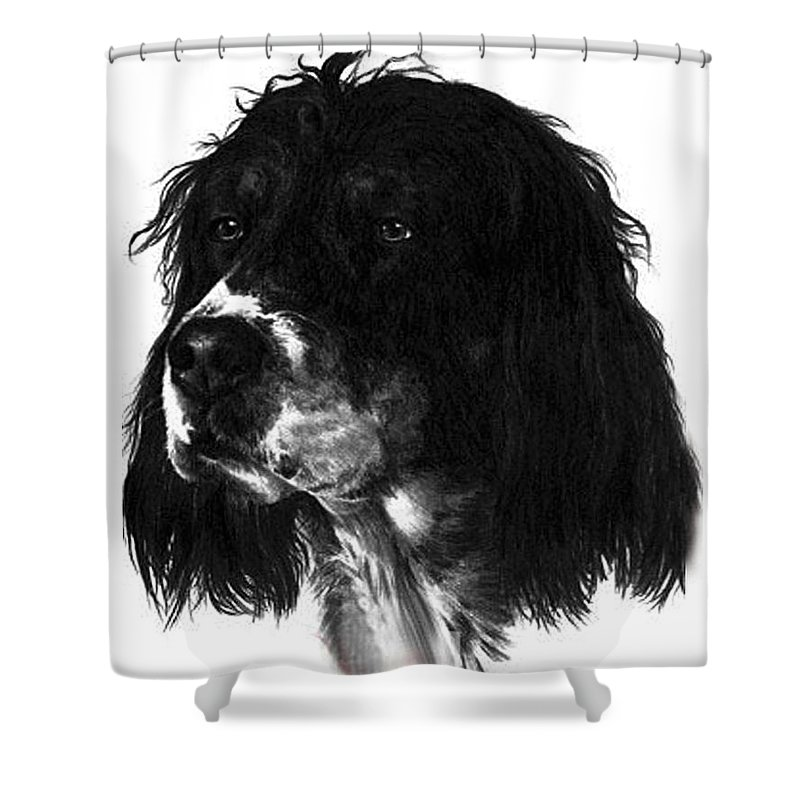 Portrait Shower Curtain featuring the drawing Sadie by Rachel Christine Nowicki