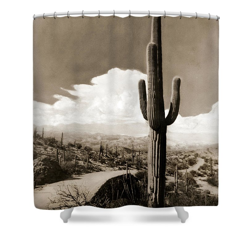 Vintage Shower Curtain featuring the photograph Saguaro Cactus 3 by Marilyn Hunt