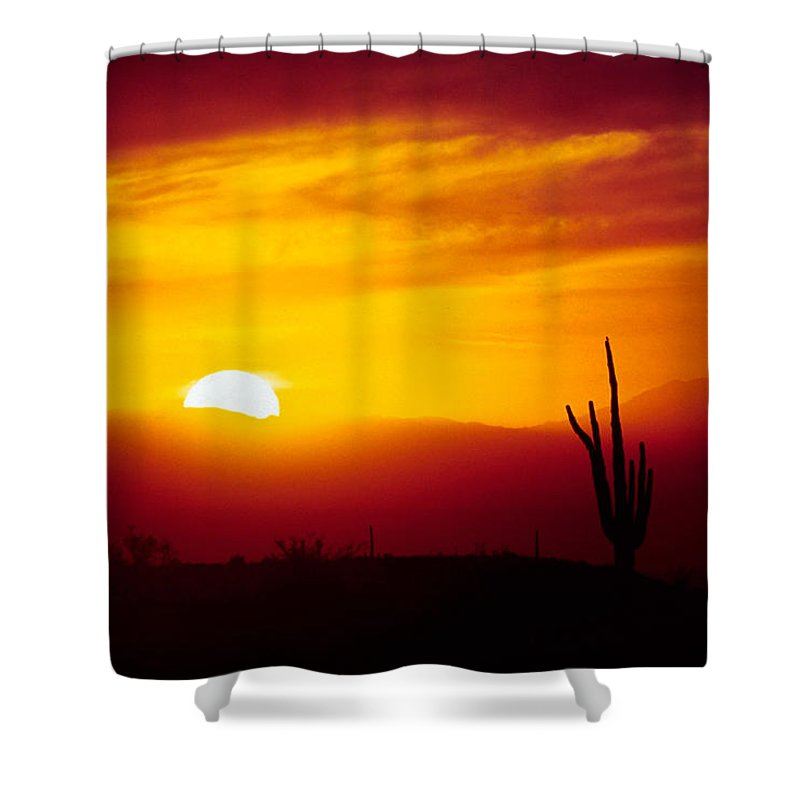Arizona Shower Curtain featuring the photograph Saguaro Sunset by Randy Oberg