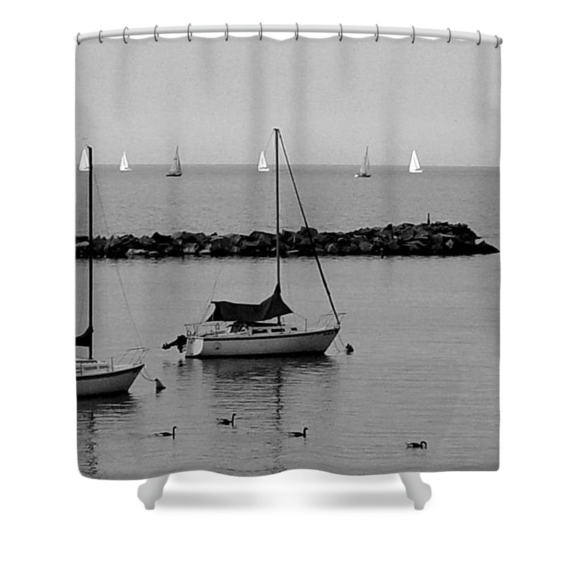 Sailboats Shower Curtain featuring the photograph Sailboats And Ducks B-w by Anita Burgermeister