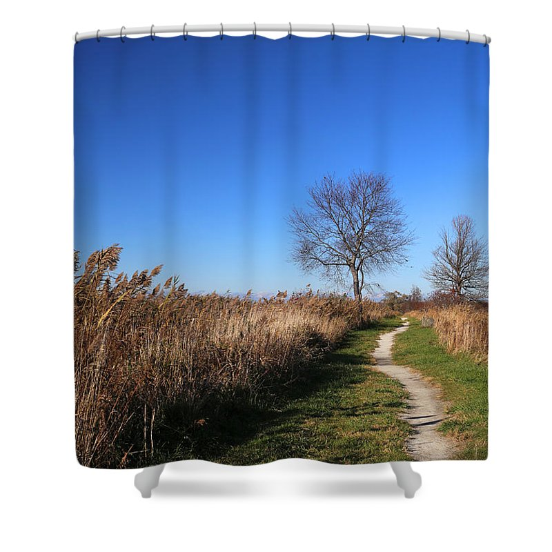 Marsh Shower Curtain featuring the photograph Saint Johns Marsh In Fall 3 by Mary Bedy