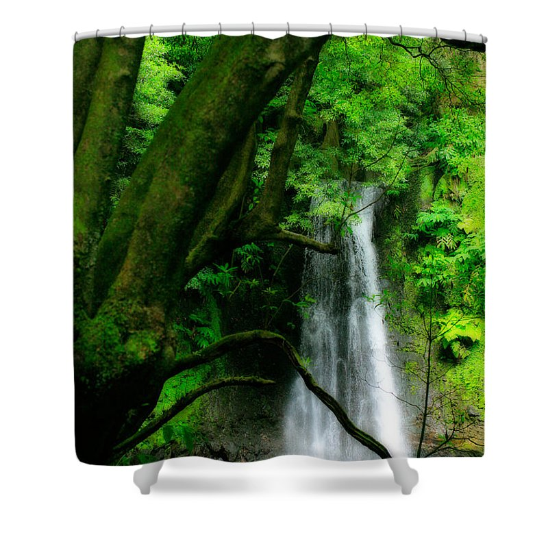 Environment Shower Curtain featuring the photograph Salto Do Prego Waterfall by Gaspar Avila