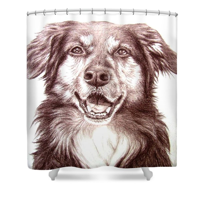Dog Shower Curtain featuring the drawing Sam by Nicole Zeug