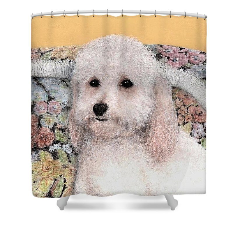 Dog Art Animals Bruce Lennon Shower Curtain featuring the painting Sammy by Bruce Lennon