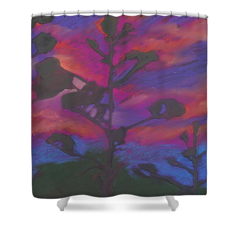Contemporary Tree Landscape Shower Curtain featuring the mixed media San Diego Sunset by Leah Tomaino
