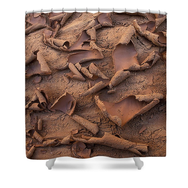 Capitol Reef Shower Curtain featuring the photograph Sand And Mud Curls by Sandra Bronstein