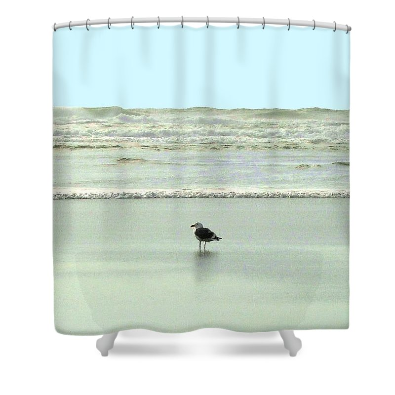 Sand And Sea Shower Curtain featuring the photograph Sand And Sea 8 by Will Borden