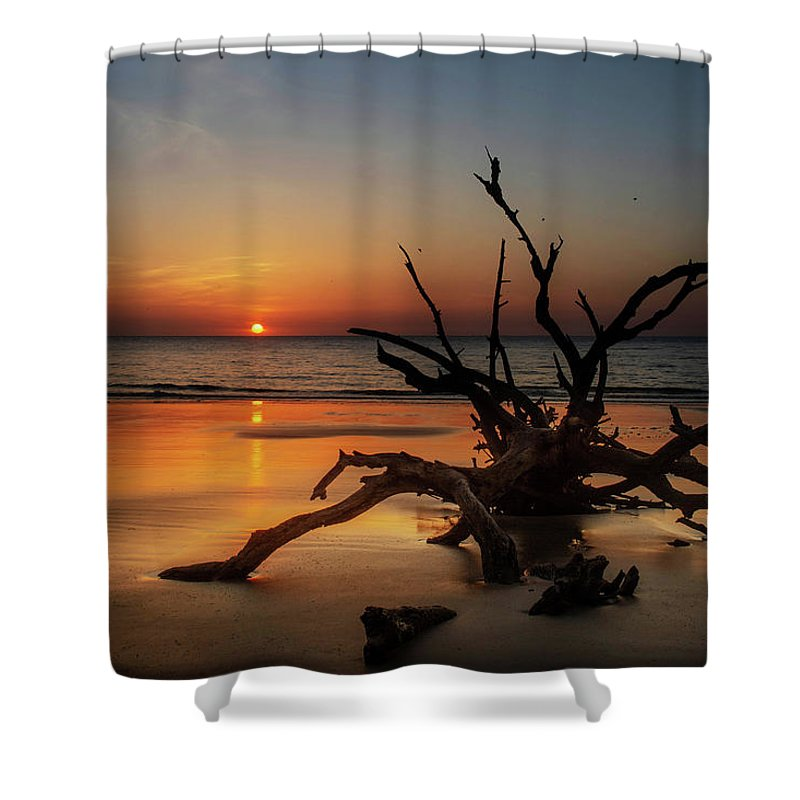 Chrystal Mimbs Shower Curtain featuring the photograph Sand Surf And Driftwood by Chrystal Mimbs