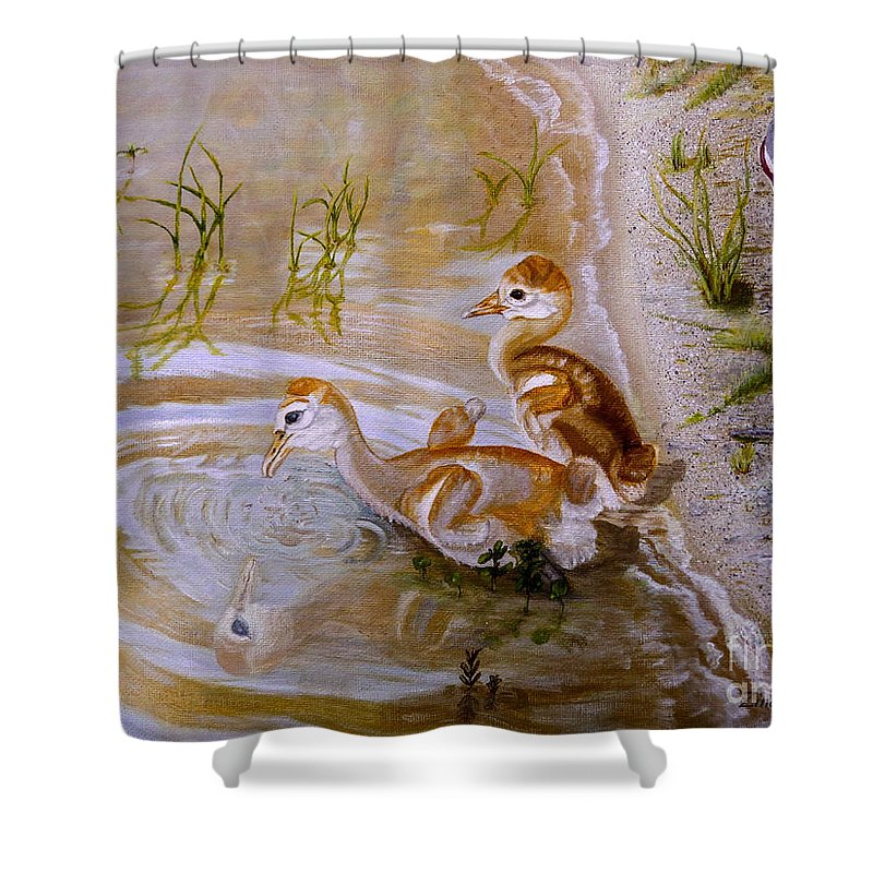 Chicks Shower Curtain featuring the painting Sandhill Cranes Chicks First Bath by Zina Stromberg