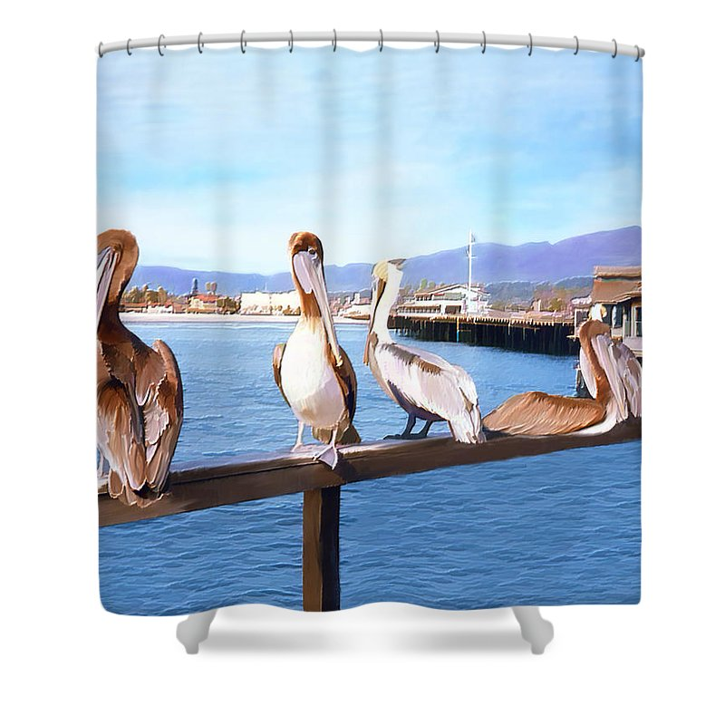 Harbor Shower Curtain featuring the photograph Santa Barbara Pelicans by Kurt Van Wagner