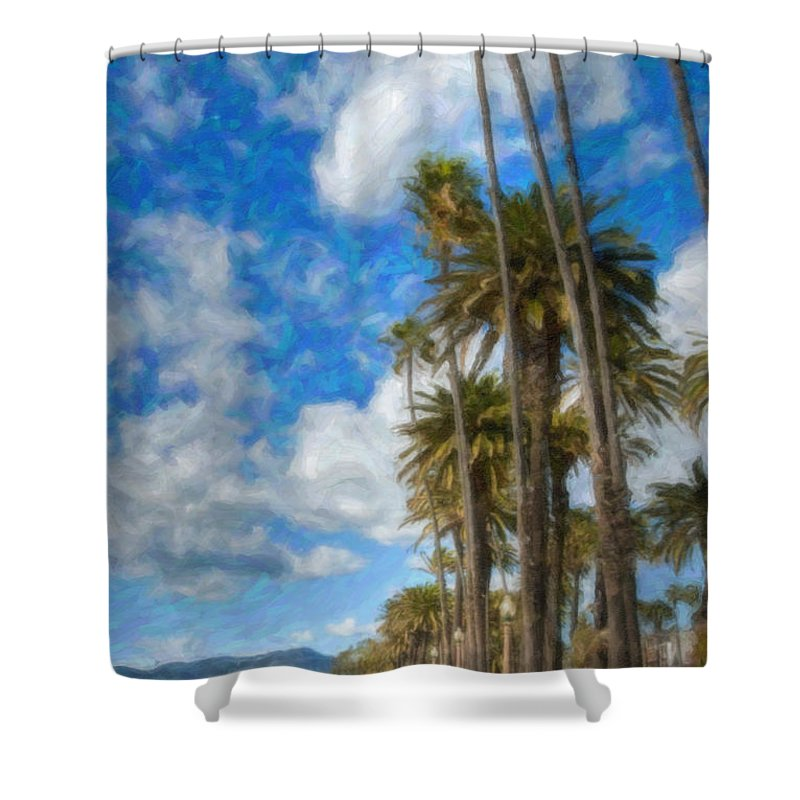 Looking North Shower Curtain featuring the photograph Santa Monica Ca Palisades Park Bluffs Palm Trees by David Zanzinger