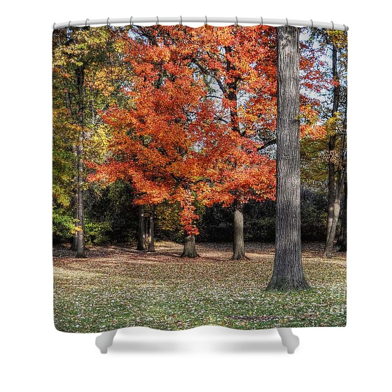Chris Fleming Shower Curtain featuring the photograph Saturday Here In The Park by Chris Fleming