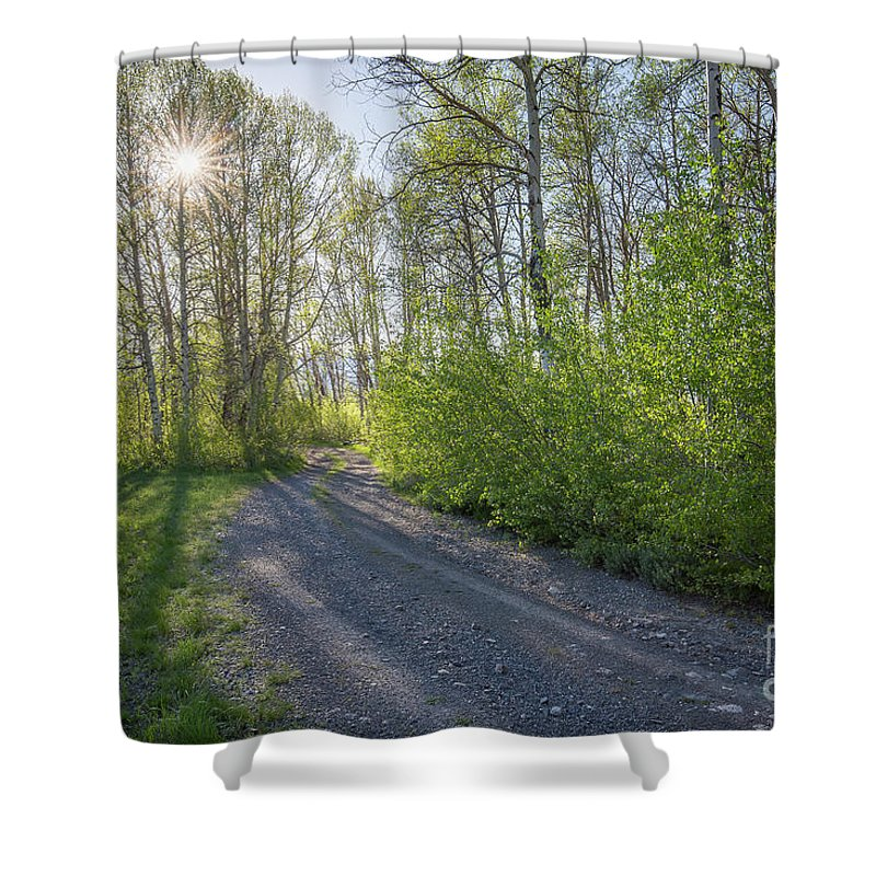 Boulder Mountains Shower Curtain featuring the photograph Sawtooth Road by Idaho Scenic Images Linda Lantzy