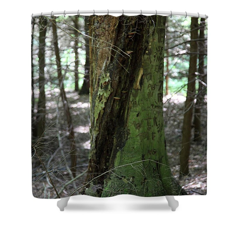 Tree Shower Curtain featuring the photograph Scarred by Amanda Barcon