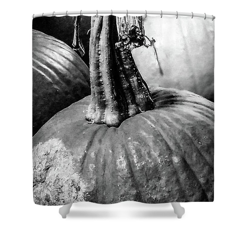 Pie Shower Curtain featuring the photograph Scary Stem Pumpkin by Marsha McAlexander