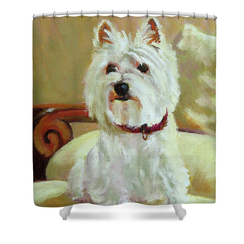 Pet Shower Curtain featuring the painting Schatzie by Keith Burgess