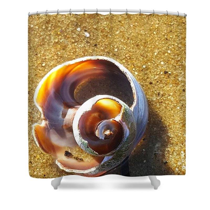 Shell Shower Curtain featuring the photograph Sea Geometry by Eric Laprade