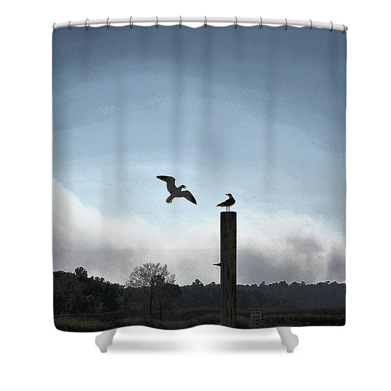 Sea Gulls Shower Curtain featuring the digital art Sea Gulls Playing Bird Tag by Louise Krueger