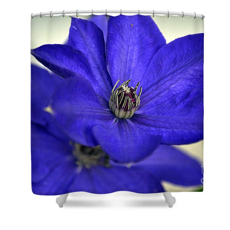 Clay Shower Curtain featuring the photograph Sea Of Blue by Clayton Bruster