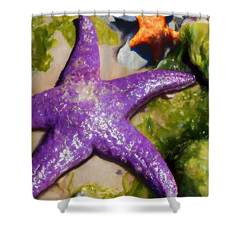 Sea Stars Shower Curtain featuring the painting Sea Stars by David Wagner