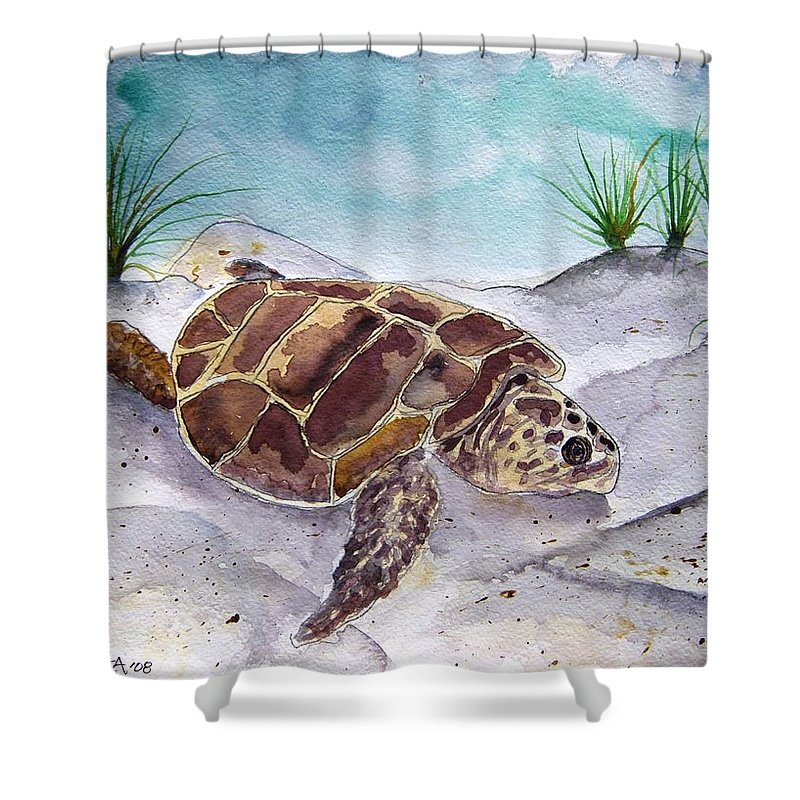 Sea Turtle Shower Curtain featuring the painting Sea Turtle 2 by Derek Mccrea