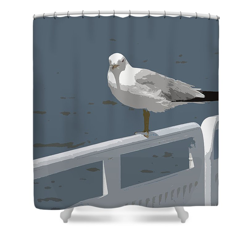 Seagull Shower Curtain featuring the photograph Seagull On The Rail by Michelle Calkins