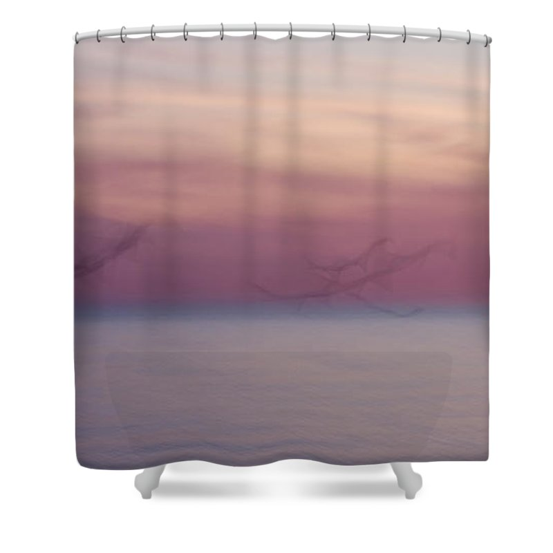 3scape Shower Curtain featuring the photograph Seagulls In Motion by Adam Romanowicz
