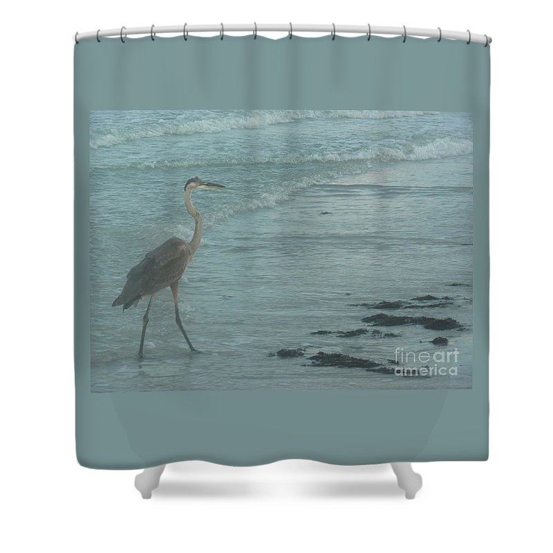 Crane Shower Curtain featuring the photograph Searching For Food by Barb Montanye Meseroll