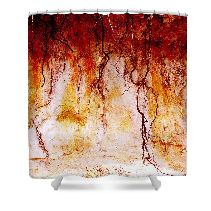 Landscape Shower Curtain featuring the photograph Searching by Holly Kempe