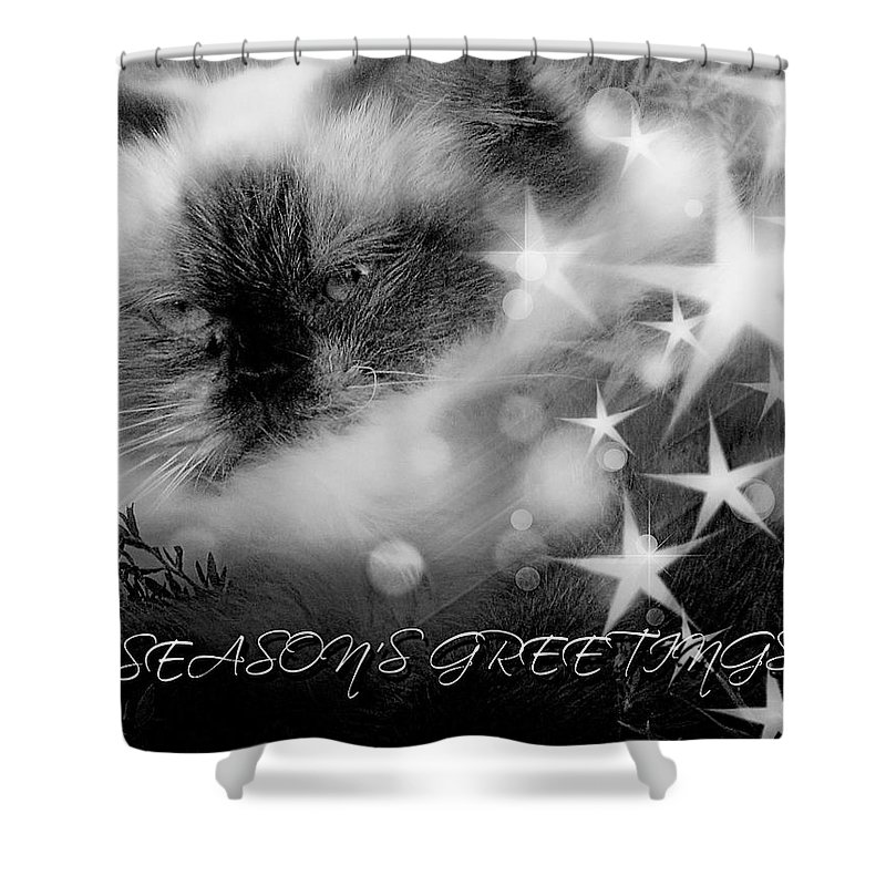 Shower Curtain featuring the photograph Seasons Greetings Bw by Theresa Campbell