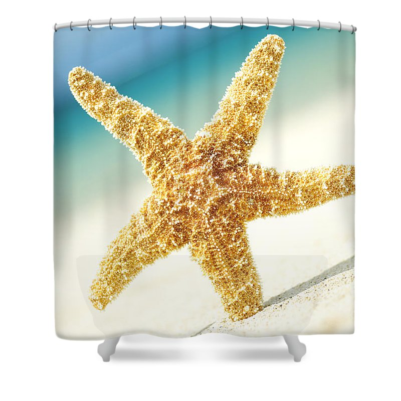 28-csm0003 Shower Curtain featuring the photograph Seastar On Beach by Mary Van de Ven - Printscapes