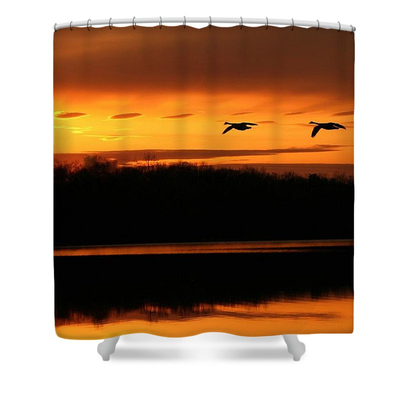 Landscape Shower Curtain featuring the photograph See Light by Mitch Cat