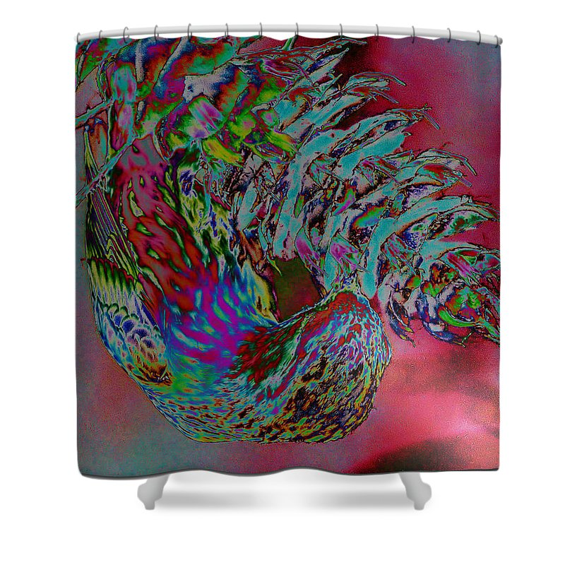 Abstract Shower Curtain featuring the photograph Seed Eater by Jeff Swan
