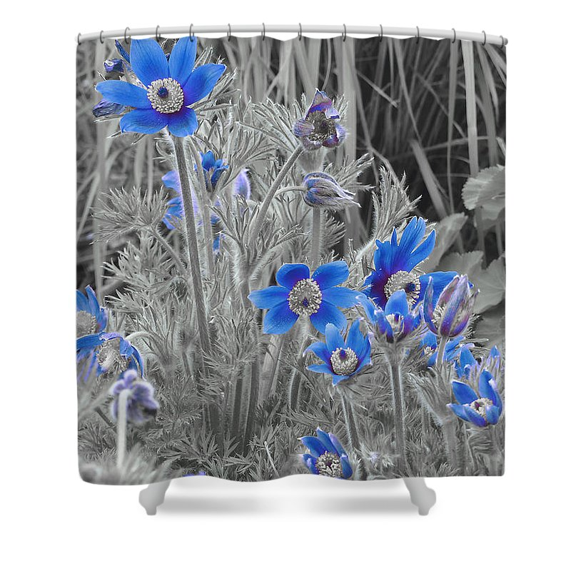 Blue Shower Curtain featuring the photograph Seeing Blue by Scott Ballingall