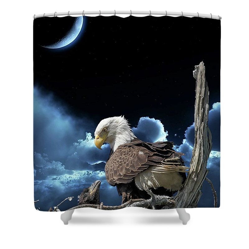 Birds Shower Curtain featuring the photograph Seeing Eye To Eye Under The Moonlight by Tony Fruciano