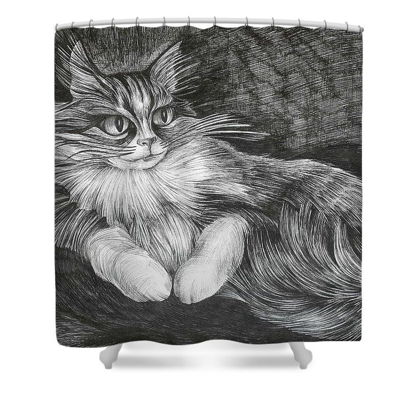 Cat Shower Curtain featuring the drawing Semona by Anna Duyunova