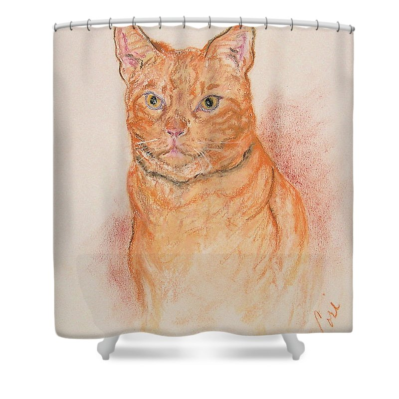 Cat Shower Curtain featuring the drawing Sentinel by Cori Solomon