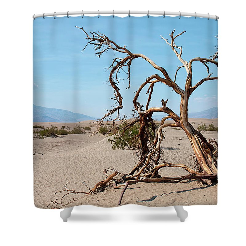 Death Valley Shower Curtain featuring the photograph Sentinel Of The Dunes by Kristia Adams