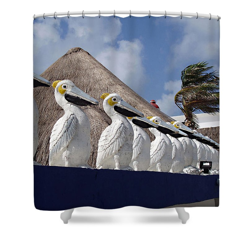 Sentry Pelicans Shower Curtain featuring the photograph Sentry Pelicans by Ellen Henneke