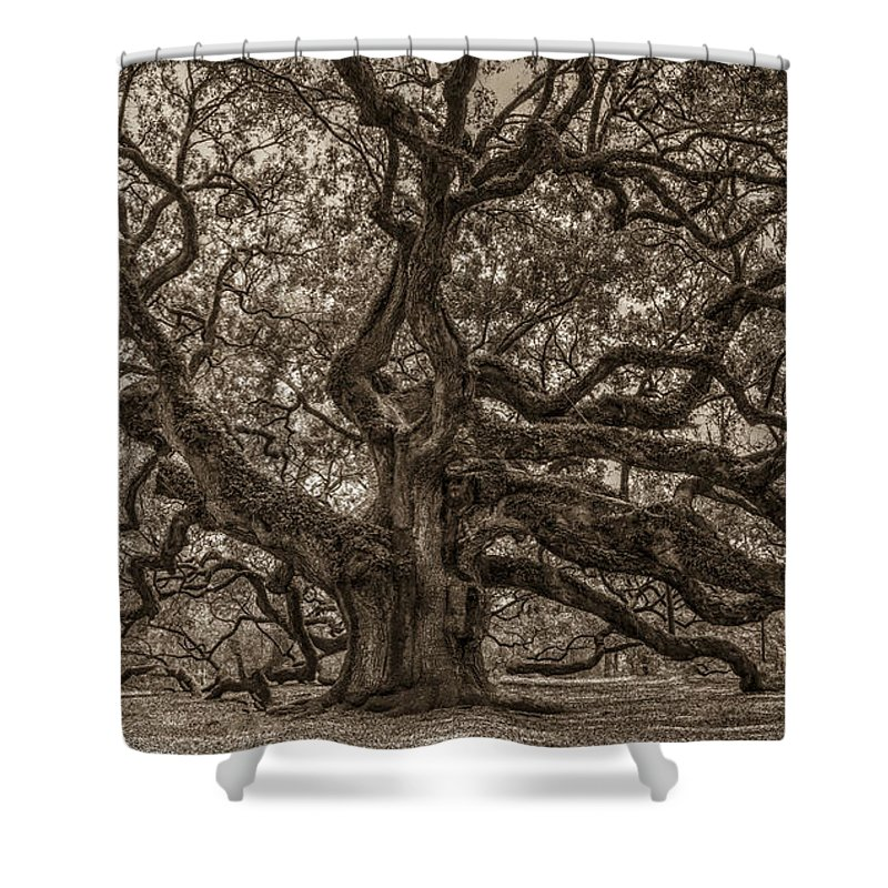 Angel Oak Tree Shower Curtain Featuring The Photograph Sepia Mod By Dale Powell
