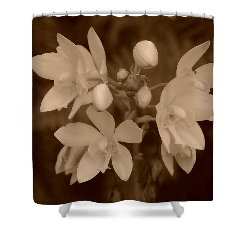 Macro Shower Curtain featuring the photograph Sepia Flower by Rob Hans