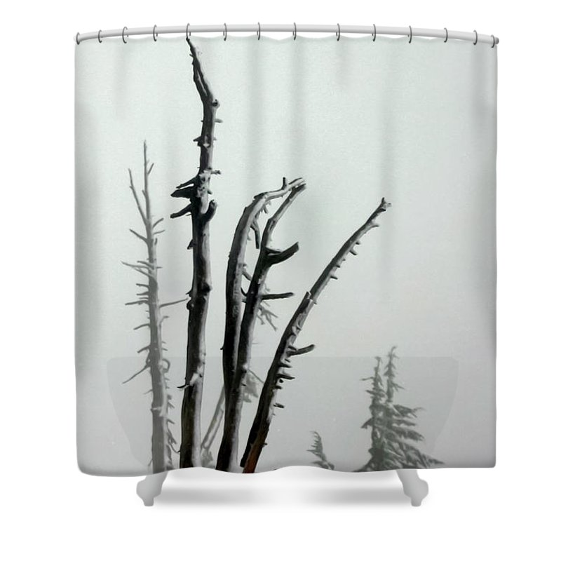 Snags Shower Curtain featuring the photograph September Snow by Albert Seger