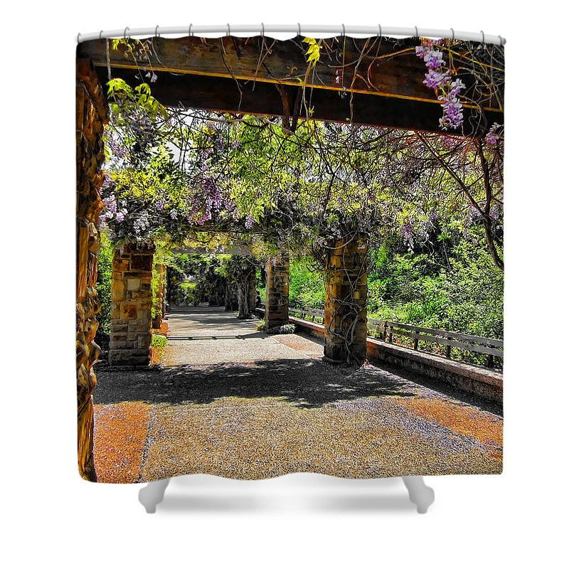 Walkway Shower Curtain featuring the photograph Serene Walkway by Douglas Barnard